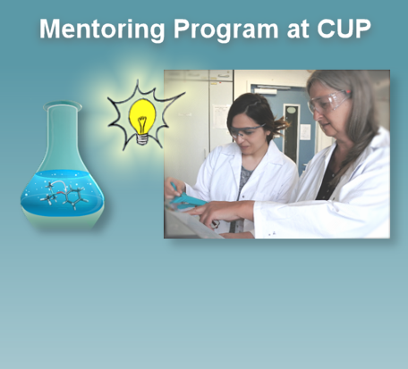 Mentoring Program of the Faculty